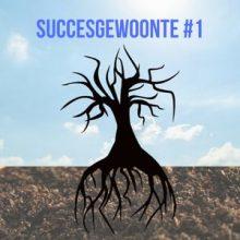 De allerbelangrijkste succesgewoonte (1)